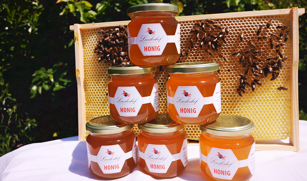 Honig vom Linslerhof vor Waben